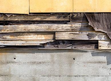 Wood Decay Remediation